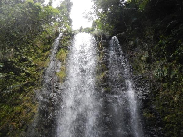 【沖縄で川遊び】大宜味村にあるター滝に行ってきた。