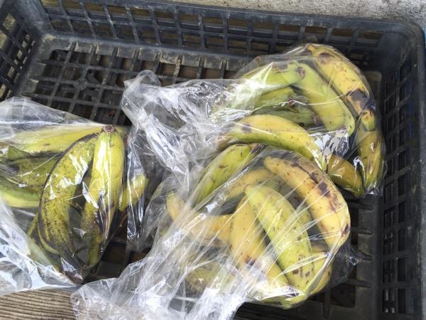 島バナナを無人販売所で激安で手に入れた