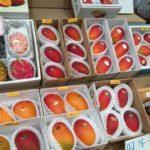 2016年の沖縄マンゴー情報。夏の沖縄土産はマンゴーがオススメ。