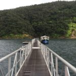 東村の福地ダム自然観察船「ゴンミキ号」に乗ってきた。
