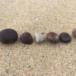 ヤンバルで海豆拾った。マルミワニグチモダマ。