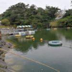 沖縄で手ぶらでプレコ釣り