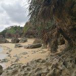 カーミージーと工事中の沖縄西海岸道路