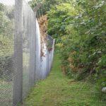 普天間基地のフェンス沿い散歩