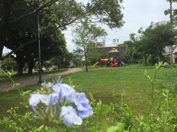 国際通りからすぐ 緑が丘公園でお弁当やピクニック